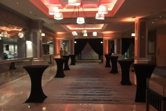 Corporate Event Decor No.1 Dublin 4 December 2017